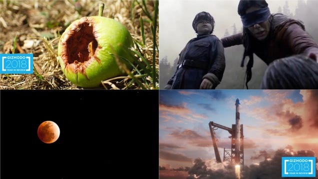 Super Blood Wolf Moon,  Bird Box,and Apple s Rotten Future: Best Gizmodo Stories of the Week