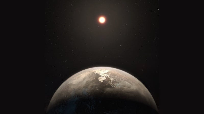 New Earth-like planet has temperatures favourable to life