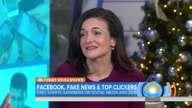 Sandberg: False stories on Facebook didn't sway election