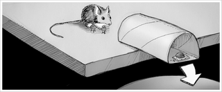 Illustration for article titled Make a DIY No-Kill Mousetrap with a Toilet Paper Roll