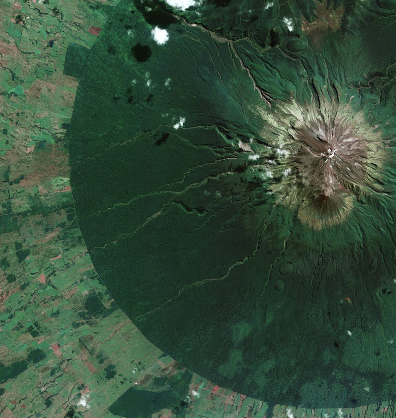 Illustration for article titled Spectacular satellite image shows almost perfect 9.6-km foliage circle