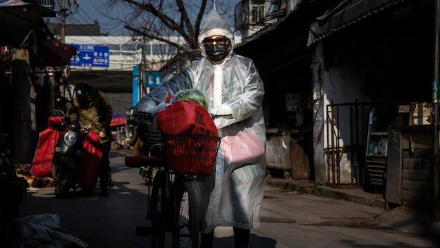 Coronavirus Has Now Killed More People Than SARS Worldwide
