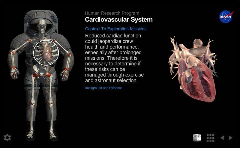 Illustration for article titled Cómo afecta a la salud de los astronautas los viajes al espacio