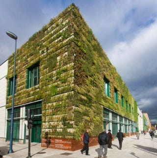Illustration for article titled 33.000 plantas envuelven este edificio para ahorrar energía