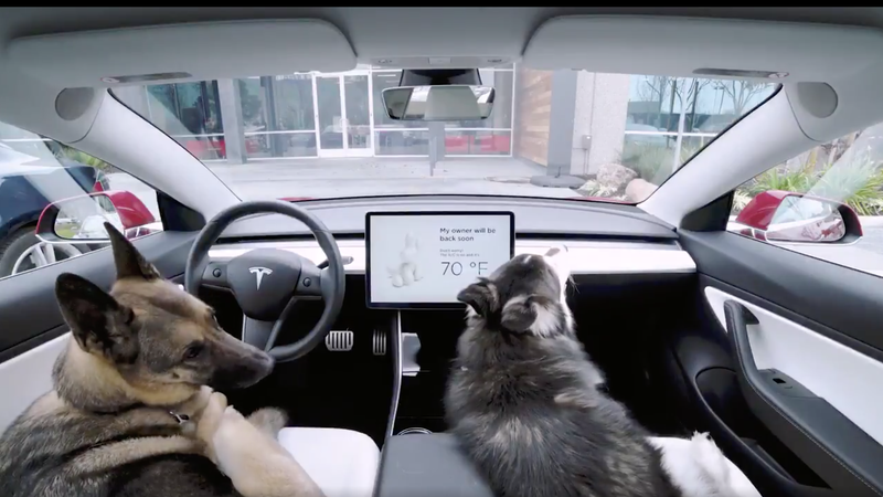 Illustration for article titled Tesla's New 'Dog Mode' Will Keep Your Pup Cool While You're out of the Car