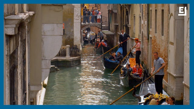 Venice s Historic Canals Have Transformed During Italy s Lockdown