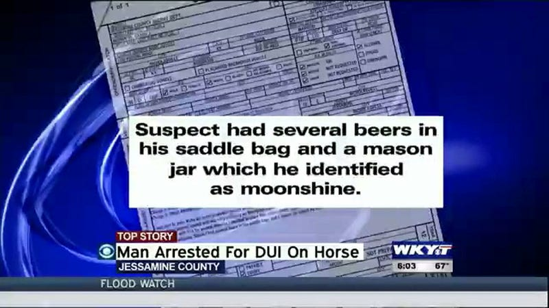 Illustration for article titled As If Being Arrested For DUI While Riding A Horse Weren't Bad Enough, The Cops Found His Moonshine