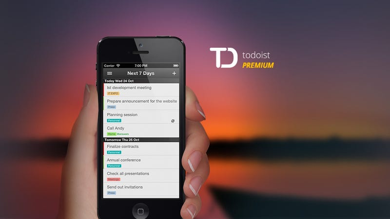 Illustration for article titled Get 1 Year of Todoist Premium for $13.99, Over 50% off