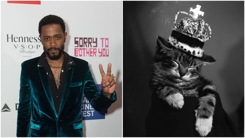 Illustration for article titled Lakeith Stanfield is…The Prince Of Cats