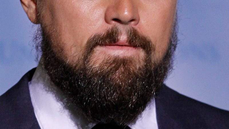 Illustration for article titled Leonardo DiCaprio Doesn't Have Fleas in His Beard...Or Maybe He Does?
