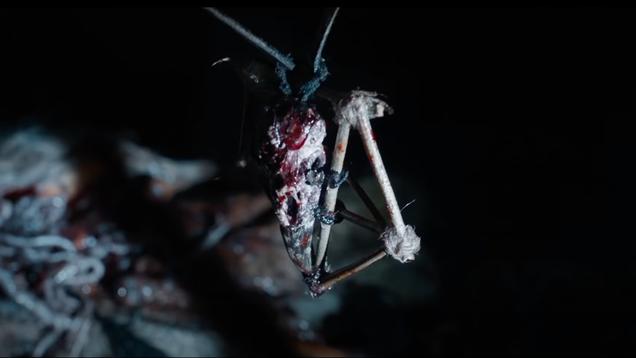 Neill Blomkamp s Demonic Movie Definitely Has Demons in It, I Guess?