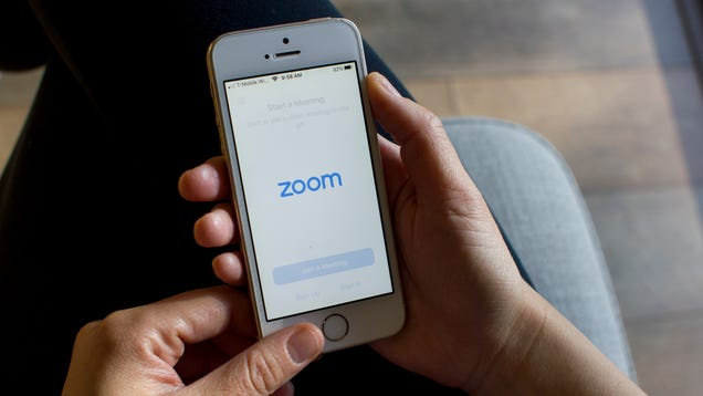 How to Prevent Jerks From Ruining Your Zoom Meetings