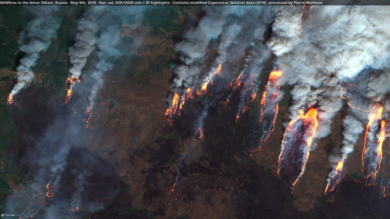 Wildfires captured by the Copernicus Sentinel satellite.
