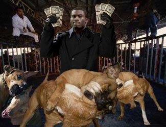 Illustration for article titled Your Afternoon Michael Vick Update