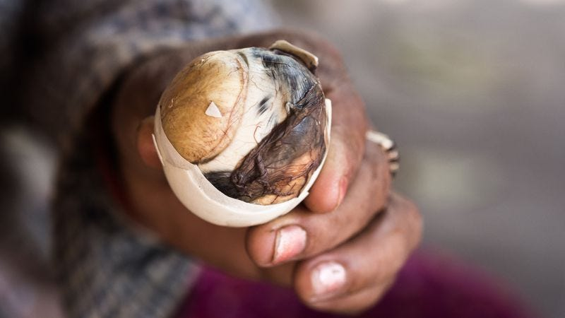 Balut, the terrifying hard-boiled duck fetus that's also a tasty