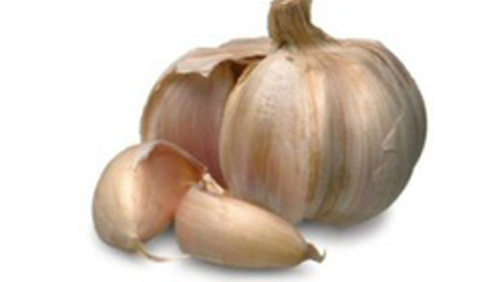 Where Garlic Has Never Gone Before: Or, How Not To Cure A