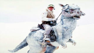 Illustration for article titled Science Proves Luke Skywalker Should Have Died In The Tauntaun's Belly