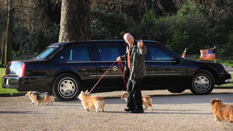 The queen's corgis walk past Barack Obama's limo in 2009, so this picture is DOUBLE destroying me.
