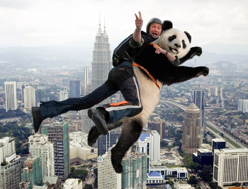 Illustration for article titled Only Way BASE Jumper Can Get Thrill These Days Is By Jumping Tandem With Endangered Species