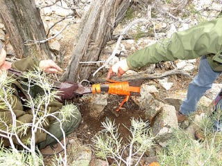 """Illustration for article titled """"Gun That Won The West"""" Discovered Hidden In National Park"""