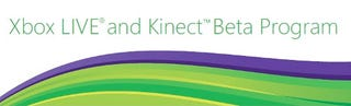 Illustration for article titled Kinect Beta Invites Going Out, Are You In?