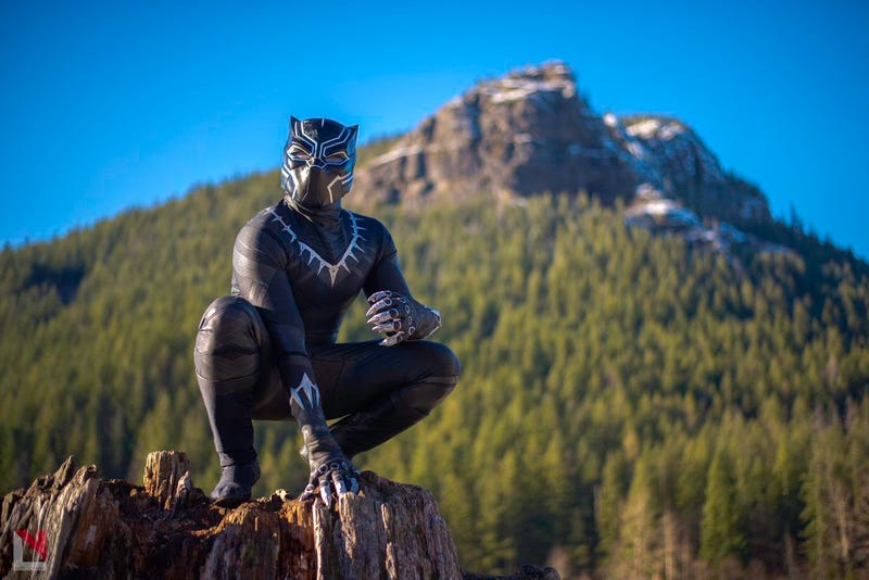 Illustration for article titled Here's Some A+ Black Panther Cosplay