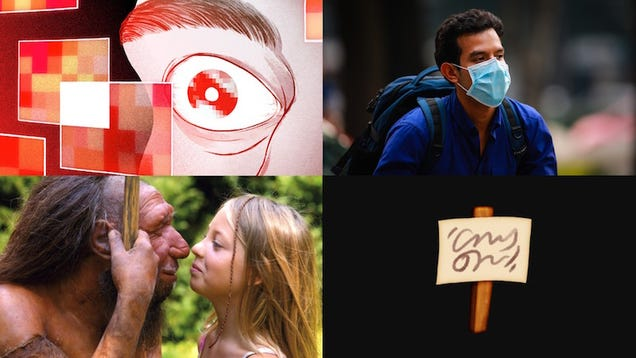 Amazon Horrors, Buttholes on Facebook and the Truth About Face Masks: Best Gizmodo Stories of the Week