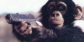Illustration for article titled Meet Ape Gremlins In War Monkeys