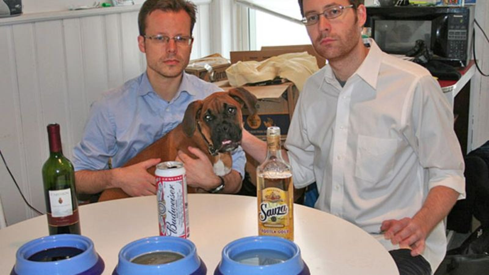 Unemployed Scientists Prove Dog Likes Beer