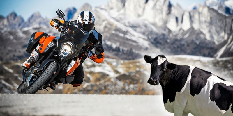Illustration for article titled How A Trade Beef With Europe Could Make Your Next Motorcycle A Lot More Expensive