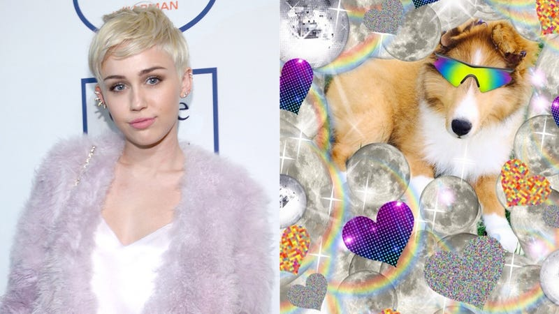 Illustration for article titled Miley Cyrus' Dead Dog Gave Her New Dog His Blessing