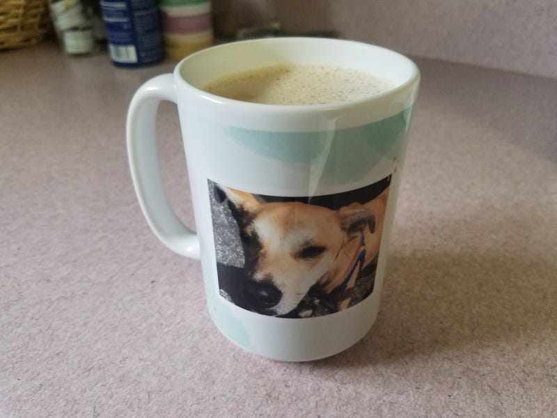 Illustration for article titled Doggo mug