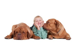 Illustration for article titled Dog Bacteria Reduces Risk of Asthma in Humans, Says Science