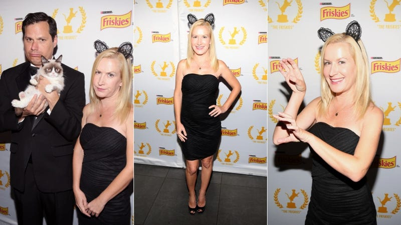 Illustration for article titled Angela Kinsey, Michael Ian Black, and Grumpy Cat Are Hanging Without Us