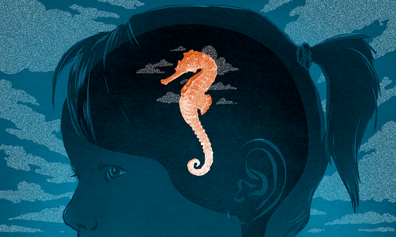 Illustration by Jim Cooke