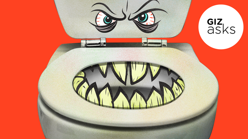 Illustration for article titled Can You Get a Disease From a Toilet Seat?