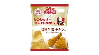 Illustration for article titled These Kentucky Fried Chicken Flavored Potato Chips Look Finger-Licking Good