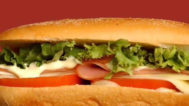 hot and cold   sandwiches viga