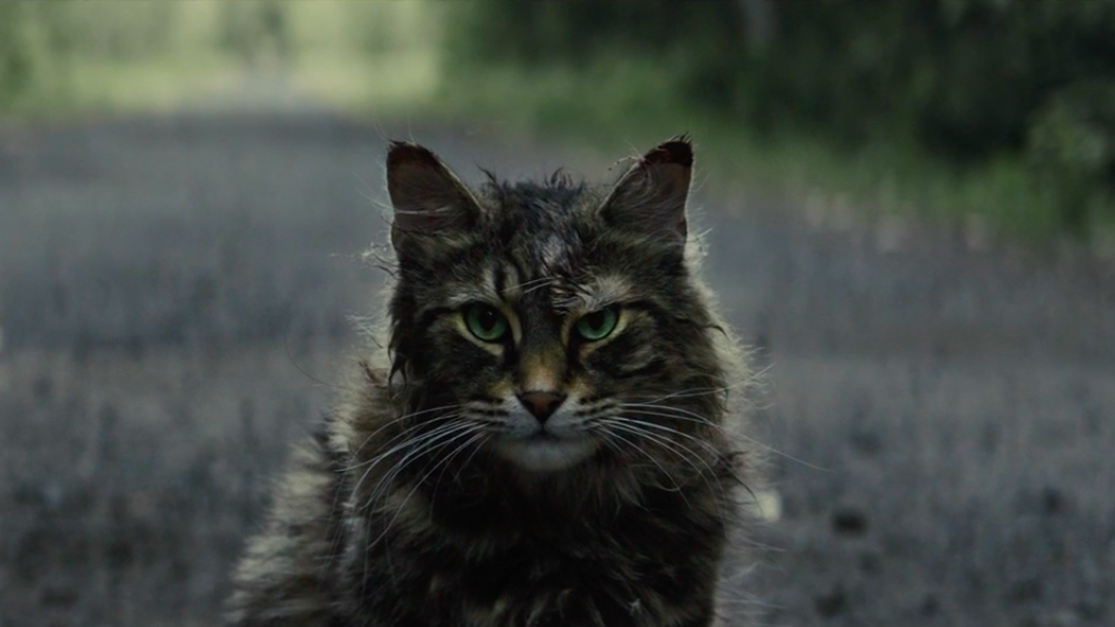 Pet Sematary's first trailer leans into the folk horror of Stephen King's scariest book