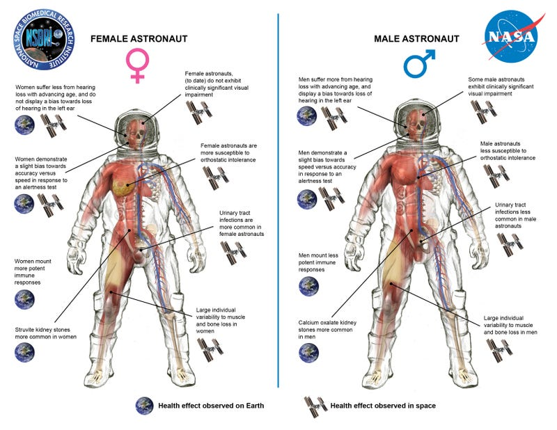 Illustration for article titled Life in Space Affects Men's And Women's Health Very Differently