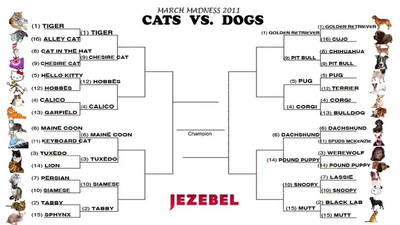 Illustration for article titled Cats vs. Dogs: Let The Sweet Sixteen Begin!
