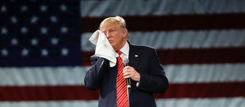 Donald J. Trump wipes his face with a towel at a rally in Tampa, Florida (AP Photo/Gerald Herbert)