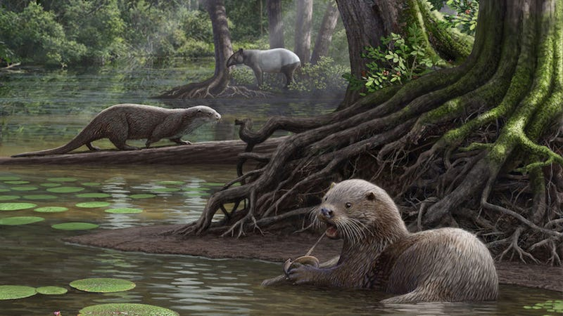 Giant otters prowled around the shallow, swampy waters of ancient China. (Image Mauricio Antón)