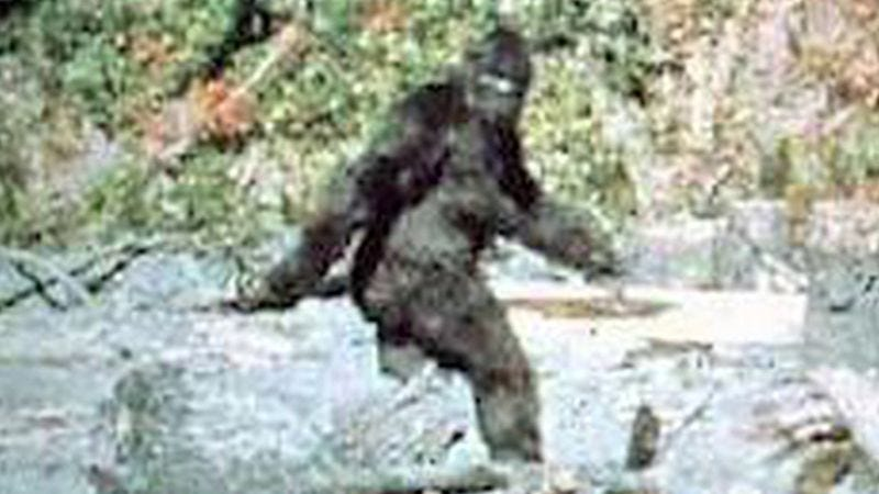 Read This: What attending a Bigfoot believers convention is like