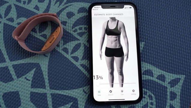 Amazon s Weird Body Fat Scanner Is Still a Problem