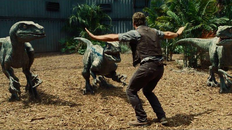 Chris Pratt controls his minions in Jurassic World