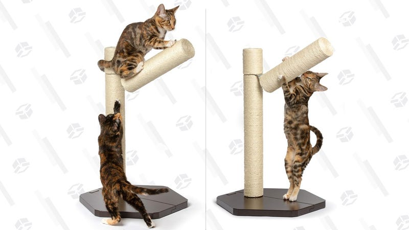 PetFusion Branching Cat Scratching Post | $39 | Amazon | Clip the 35% off coupon