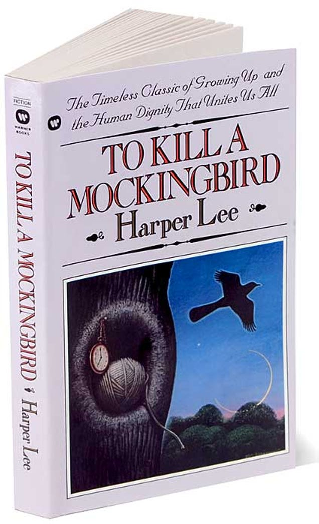 Need to write essay about to kill a mocking bird plz help?