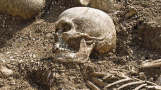 Illustration for article titled Mass grave reveals 1,000 year old Viking massacre
