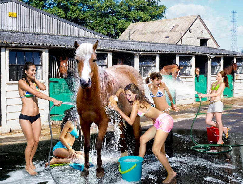 Illustration for article titled Sorority Raises Money At Local Stable With Bikini Horse Wash